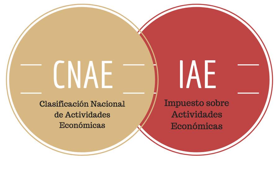 IAE Arqueología